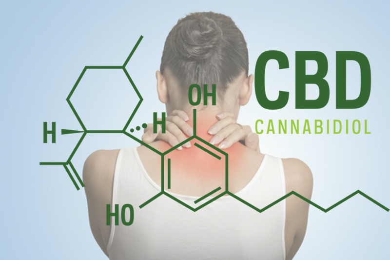 CBD for Physical Therapy